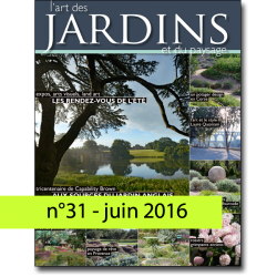 n°31 - June 2016