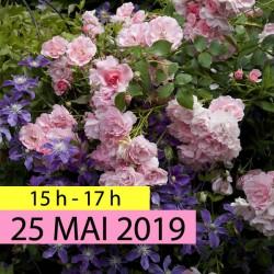 Stage Photo du 25 mai 2019
