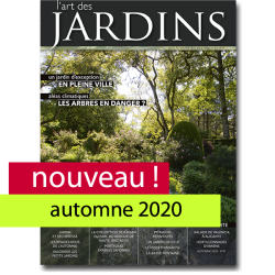n°47-  Automne 2020