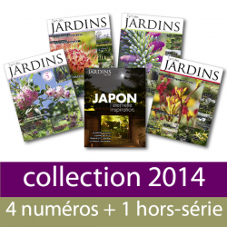 Year 2014 Collection