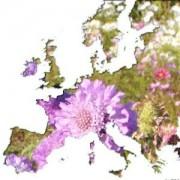 Europe - DOM TOM